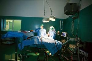 Top kirurgija za male životinje 4